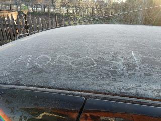 Утром после заморозка
