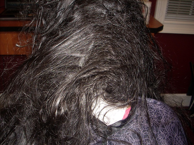 How to Untangle Severely Matted Hair foto