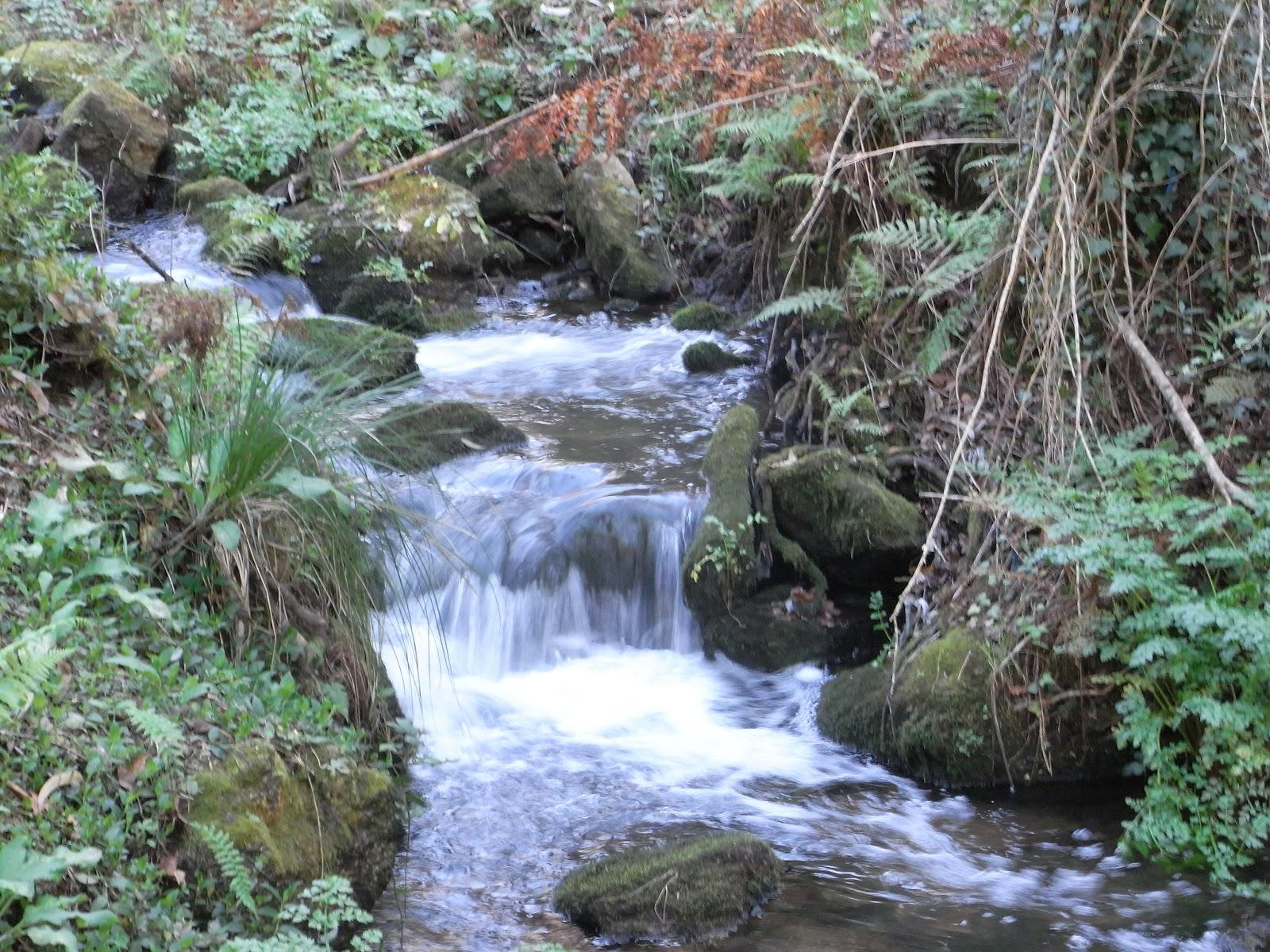 Senderismo por rios en Pontevedra