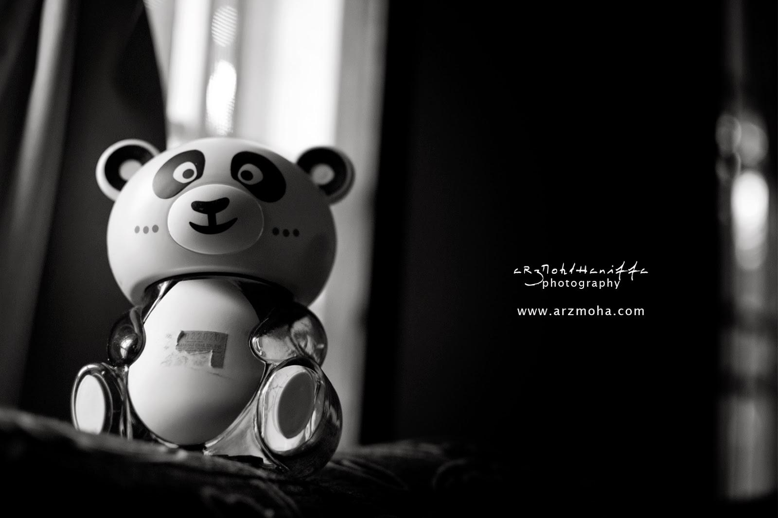 Panda, Menabung, Masa Depan, Kesusahan, arzmoha.com, gambar cantik