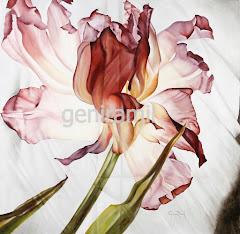 Las arrugas del tulipan