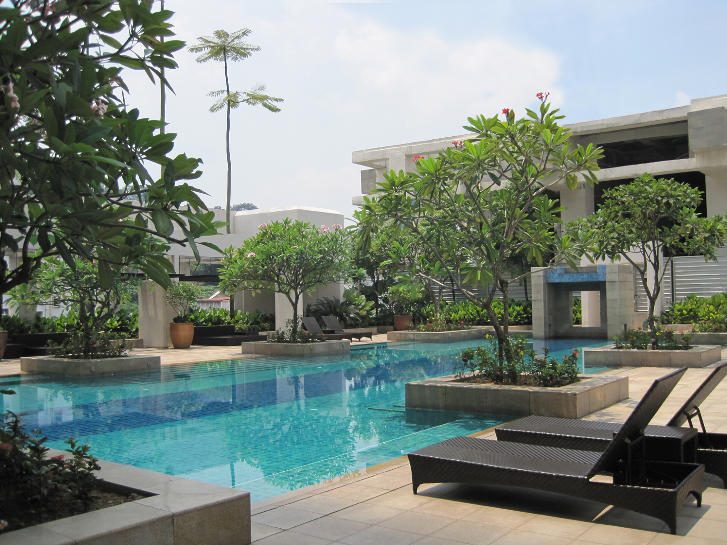 Tropical Modern Landscape Design