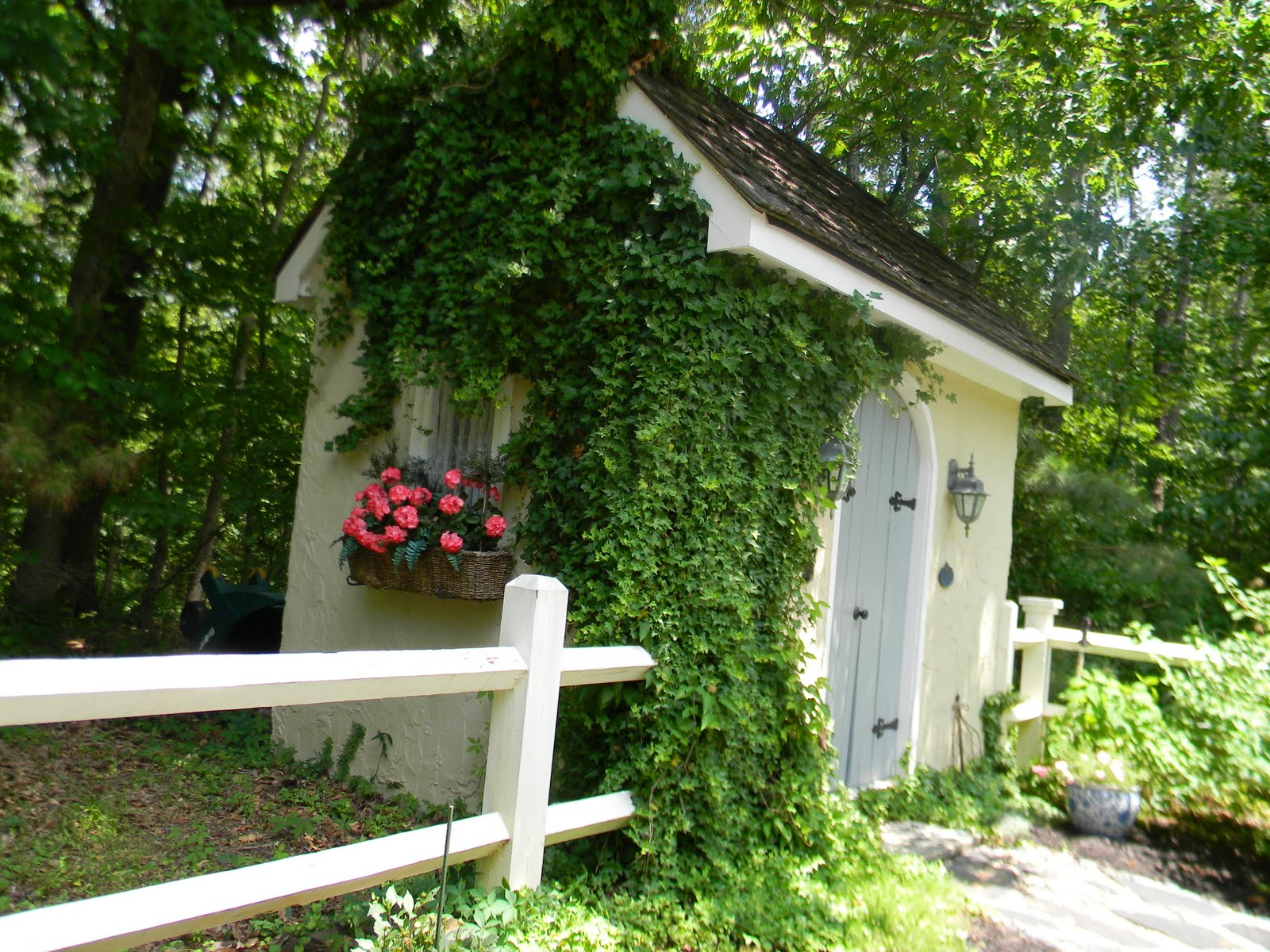 gardening buildings sightings light shed and specifically have seeds is potting cuttings the for gain enthusiast supreme windows uk been garden sheds large maximum to designed