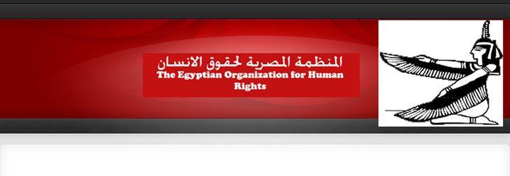 """المنظمة المصرية تشكل """"مرصد مكافحة العنف"""""""