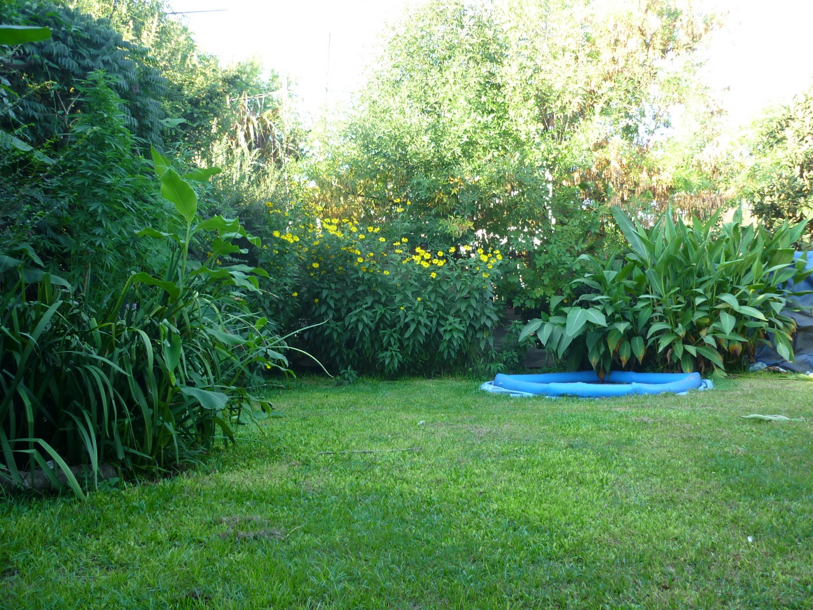 ver plantas de jardin ideas de disenos ForVer Jardines