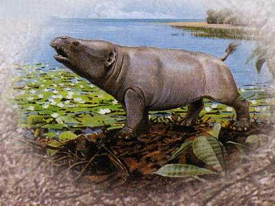 antepasados del elefante Phosphatherium