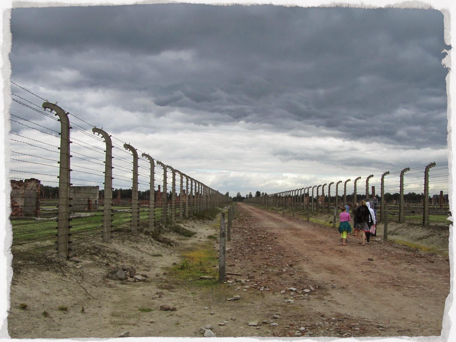 Auschwitz, feeling the horror © ludo rutten