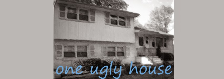 One Ugly House
