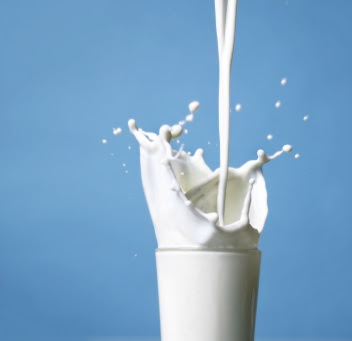 Milk & Dairy Products