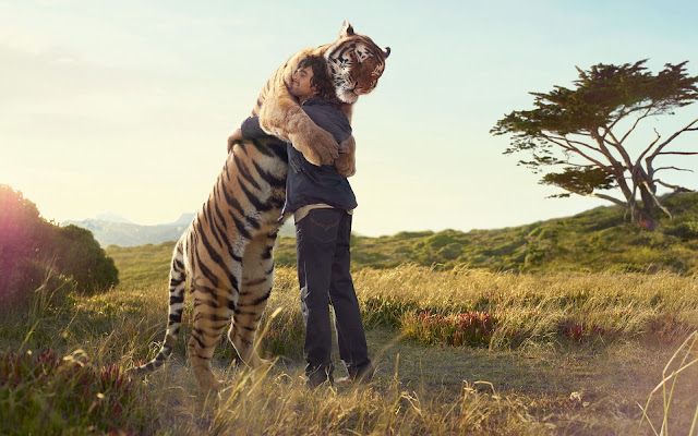 man and giant tiger hugging in field