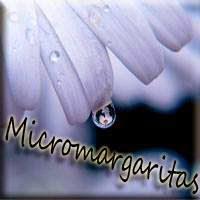 Micromargaritas