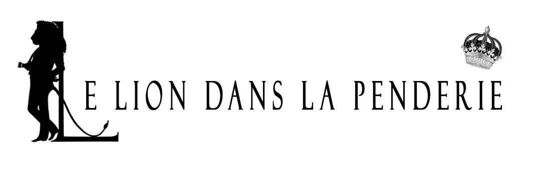 Le Lion dans la penderie Blog Mode Homme - Lifestyle - Personal Shopper Lyon - Paris