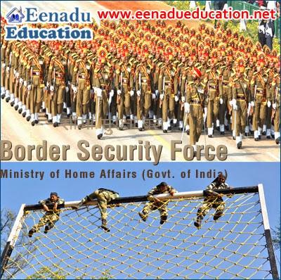 BSF Motor Transport cadre posts