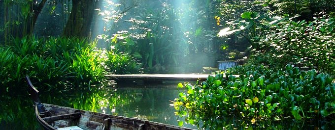 tranquil pond at tropical spice garden penang