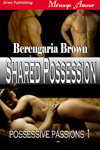 Possessive Passions book 1