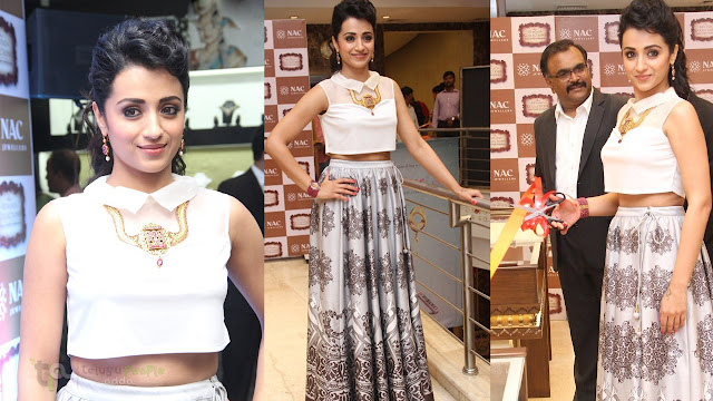 Trisha Latest Gorgeous HD Stills