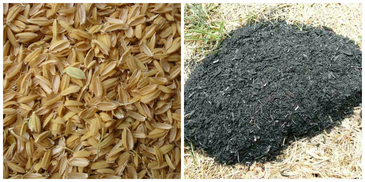 the potential of coconut bagasse in Coconut fibre - a versatile material and its applications in engineering majid ali senior engineer, structure design section, national engineering services pakistan.