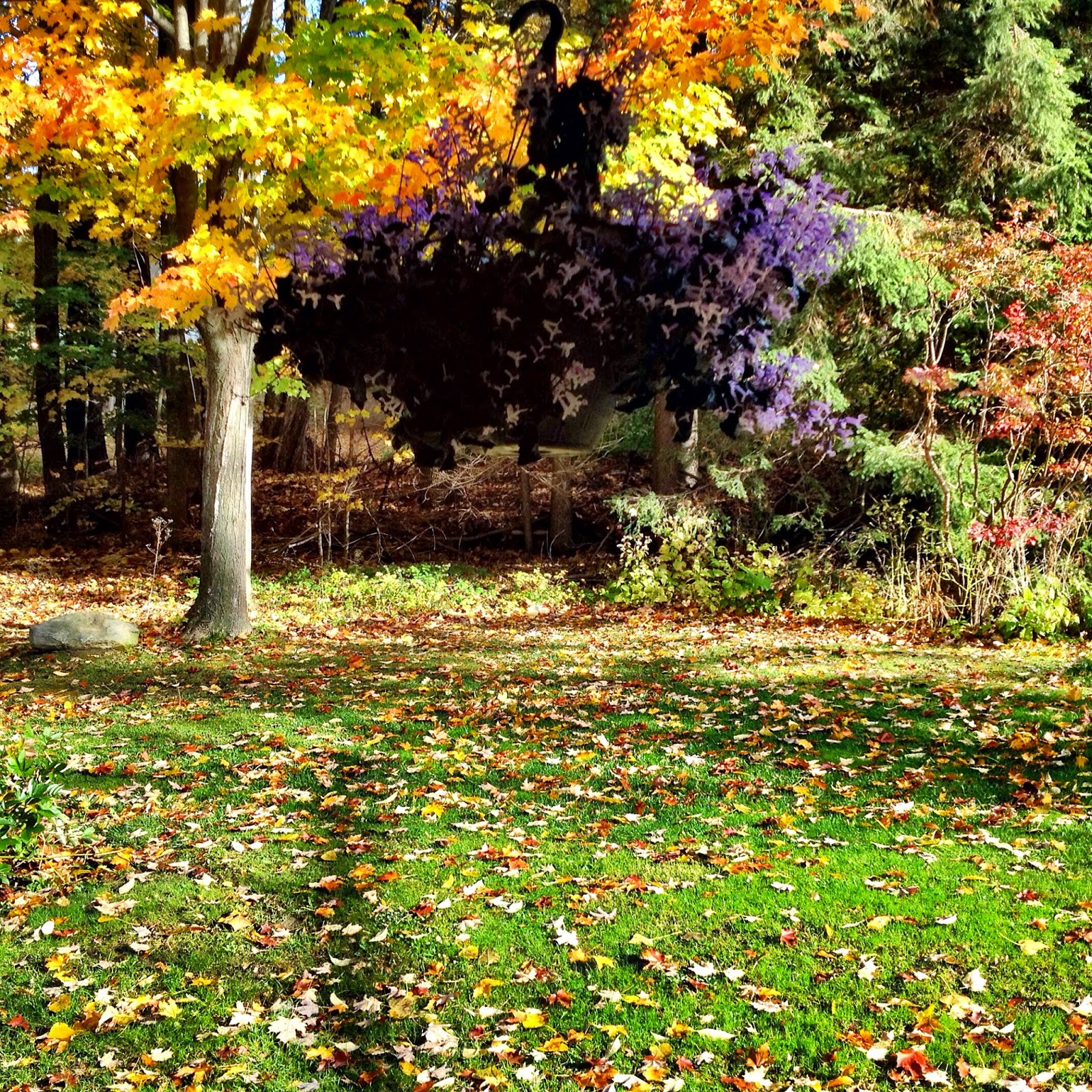 Travel And Food Notes Fall In The Berkshires Elegant