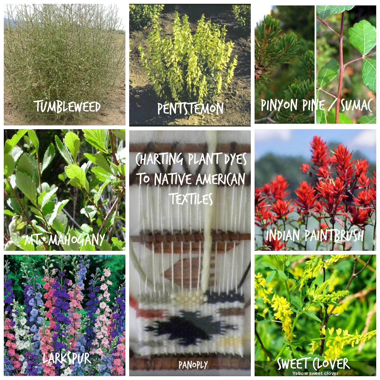 USDA: Natural Plant Dyes