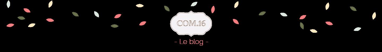http://blog.com16.fr/