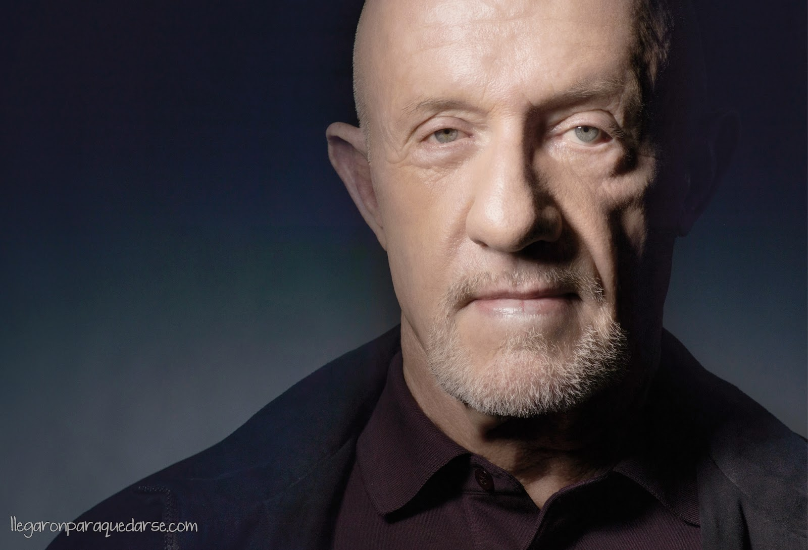 Jonathan Banks como Mike Ehrmantraut