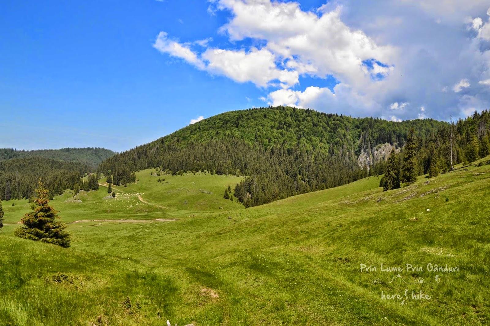 lumea-pierduta-hike-poiana-ponor-track