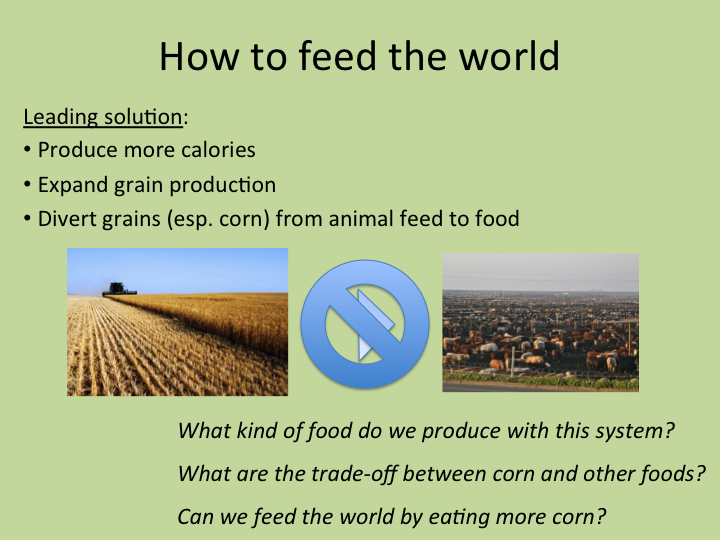 World hunger problems and solutions essay