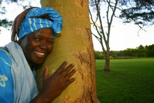 Wangari Maathai the Nobel Peace Prize Winner spent her life planting and nurturing trees