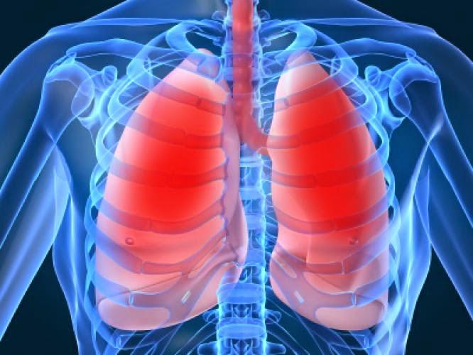 Menjaga Kesehatan Paru-paru