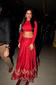 Sonal Chauhan Sizzling at Size Zero Premier-thumbnail-1