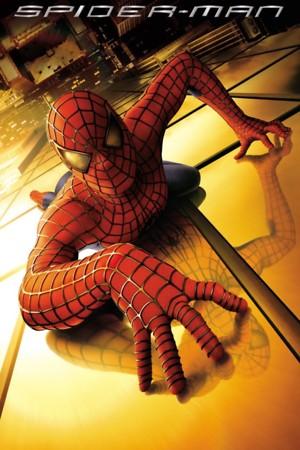 Poster Spider-Man 2002