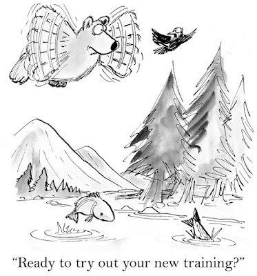 "A bird says, ""Ready to try out your new training?"" to a cartoon bear in the air flapping its paws as it tries to fly"