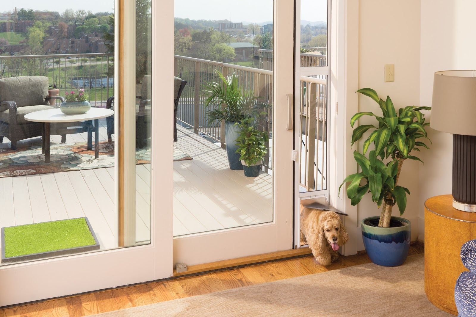 Exterior Door With Pet Door. PetSafe Sliding Glass Pet Door Giveaway  Pawsitively Pets