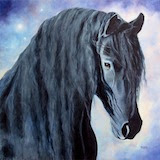 Equine Portraits