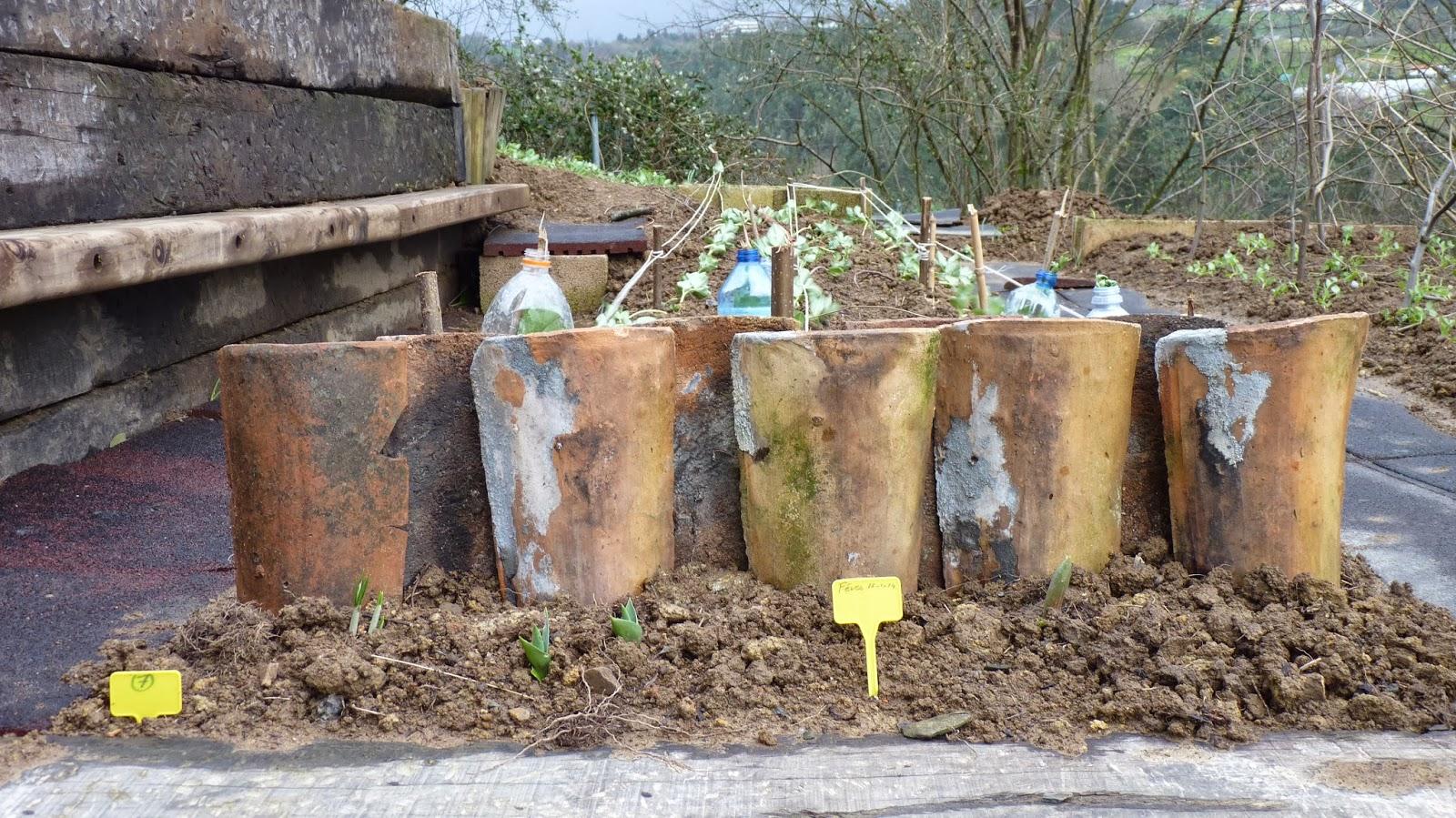 Une serre a l 39 cole plantations for Bordure terre cuite jardin