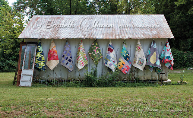 Tula Pink Quilt by Elizabeth Maxson