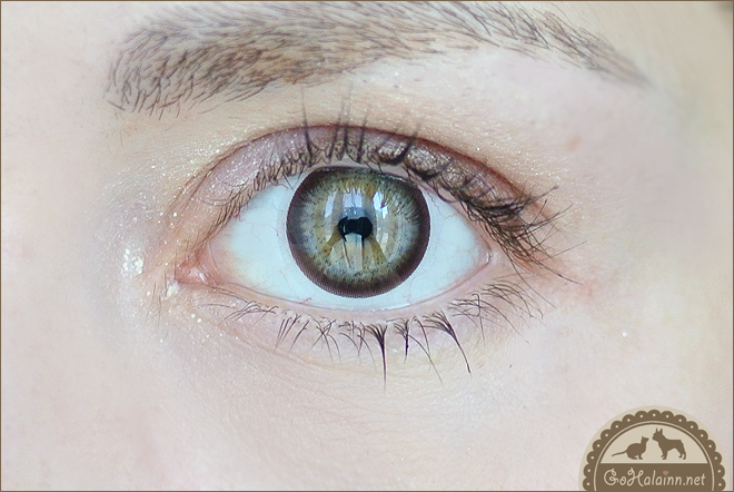 GEO Geolica Euro Circle Dark Brown Circle Lenses Review