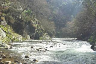 Hoces del Esva, vista del río en el embalse