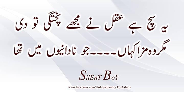 facebook pakistani chat rooms urdu chat pak chat desi chat