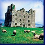 """Фоторассказ об ирландской деревне: почему на """"зелёном острове"""" поздно женятся."""