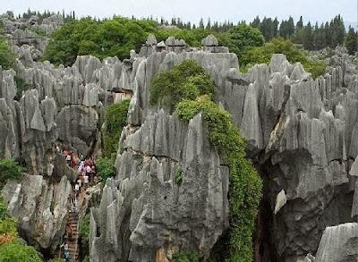 شاهد معنا غابة الأحجار بالصين