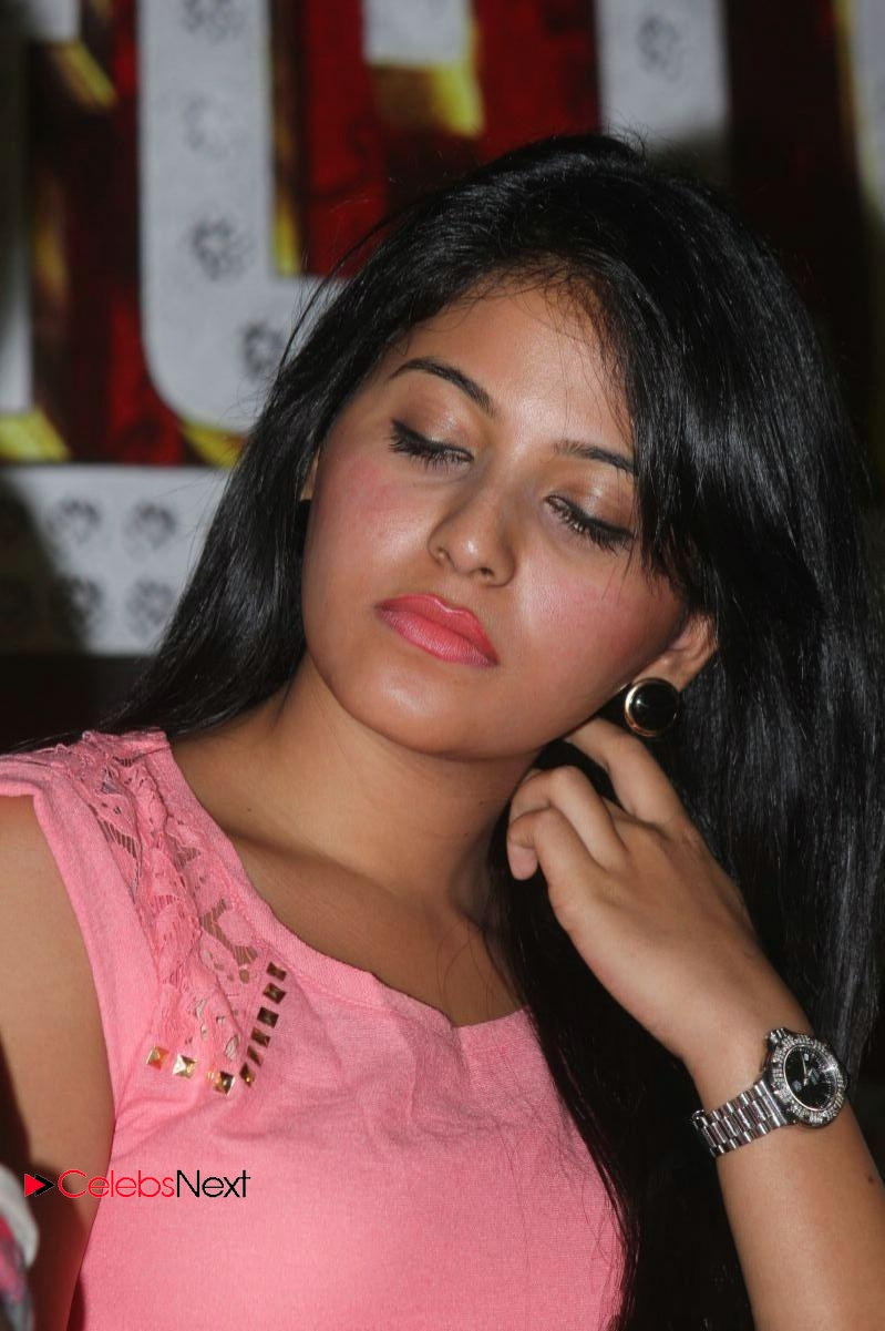 anjali latest photos at settai tamil movie press meet ~ celebs next