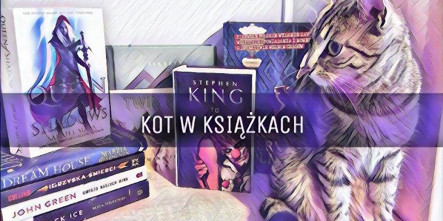 Kot w książkach