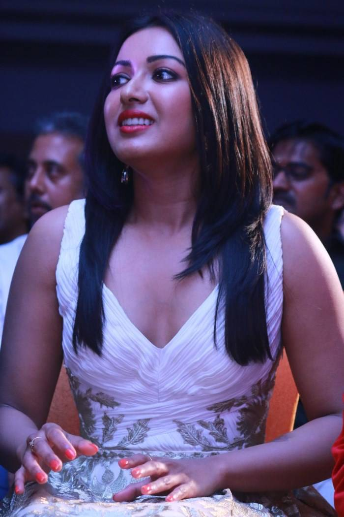 Catherine Tresa Picture Gallery at Kanithan Movie Audio Launch ~ Celebs Next