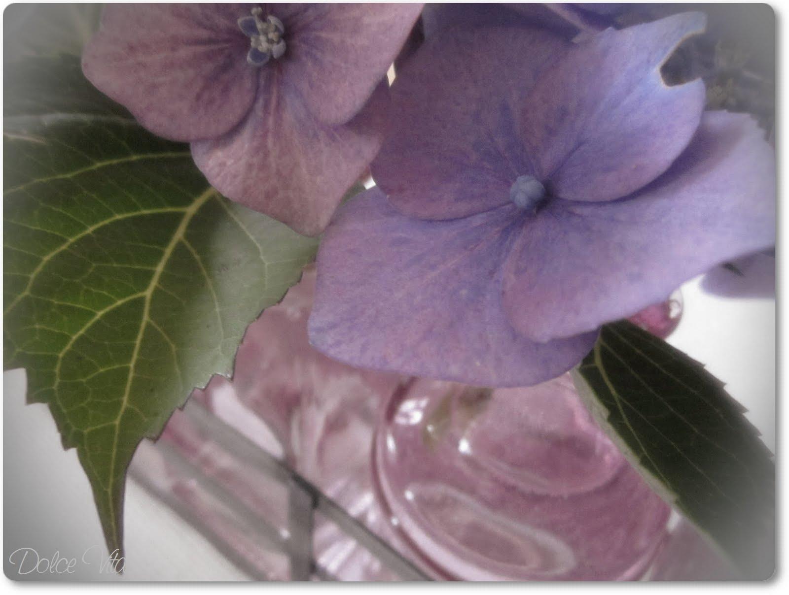 dolce vita tischdeko mit hortensien. Black Bedroom Furniture Sets. Home Design Ideas