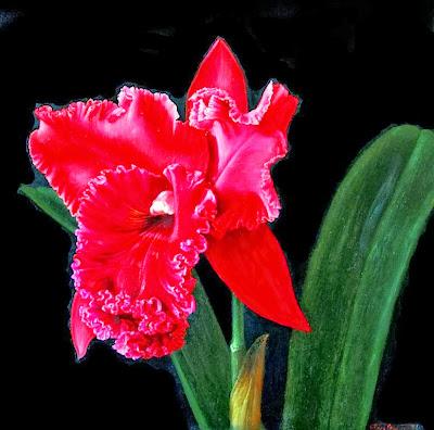magnificas-pinturas-de-flores