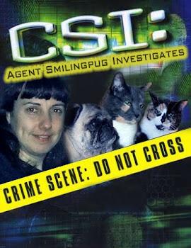 CSI Burnaby