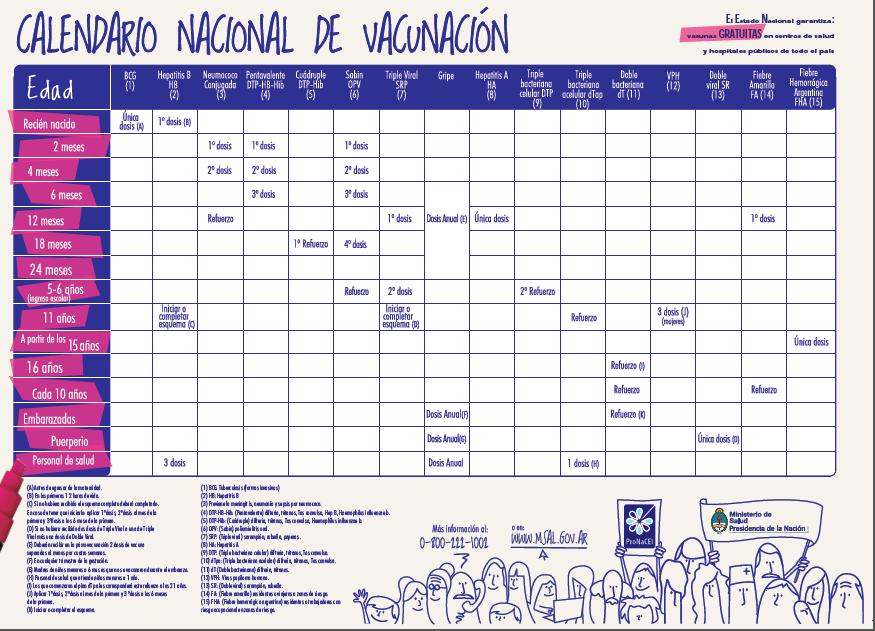 Guía para padres primerizos: Calendarios de vacunación