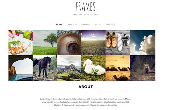 Frames Wordpress theme