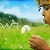 RECEITA DE ACORDAR PALAVRAS (Roseana Murray)